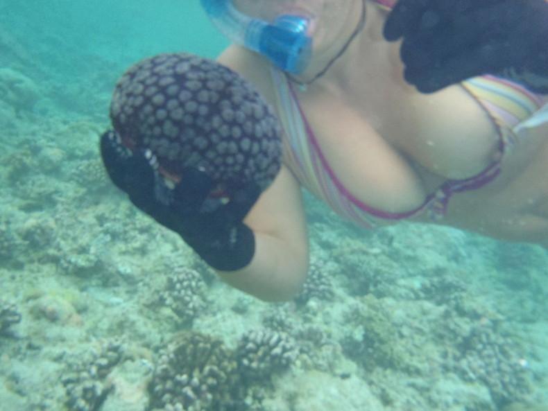 【おっぱい】ビーチやプールで発見した乳首ポロリハプニングしてる女の子を盗撮した水着おっぱい画像集【80枚】 59