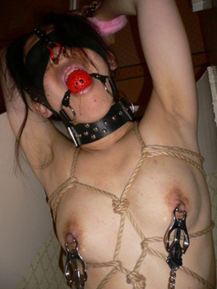 【おっぱい】SMアイテムであるボールギャグを装着させられ乳首勃起状態のドMなお姉さんたちのボールギャグおっぱい画像集w【80枚】 10