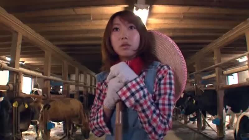 牧場で働く素人さんが牛に囲まれた中でカウガールコス3Pwww